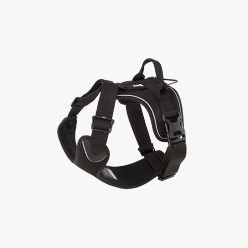 Active Harness (Raven)