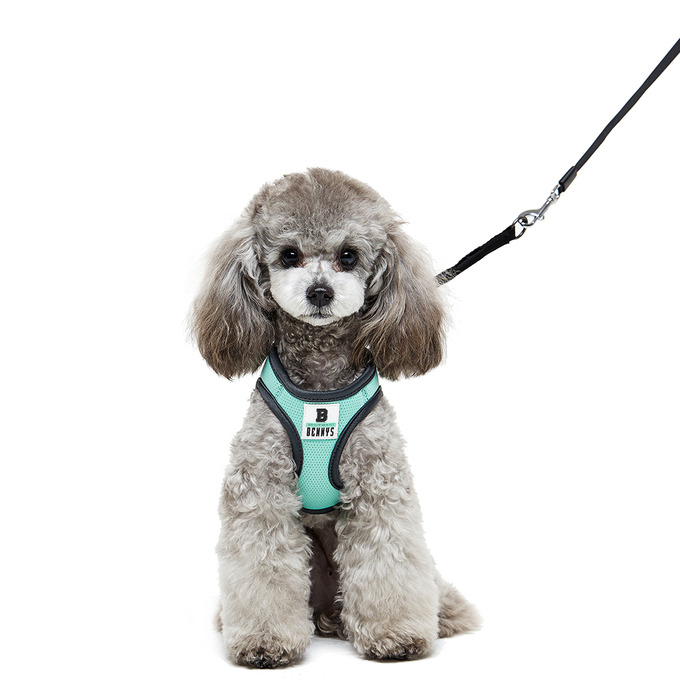 Bennys Basic Harness (Mint)