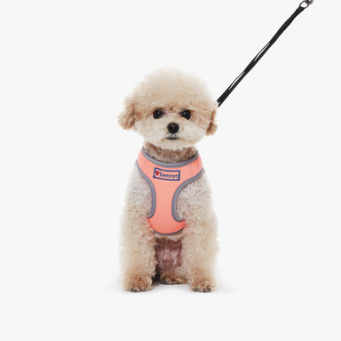 Bennys Basic Harness (Orange)