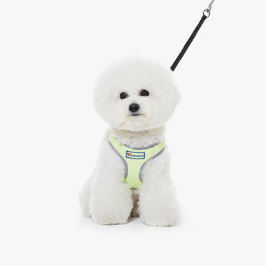 Bennys Basic Harness (Lime)