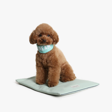 Soft Coolmat (Mint)