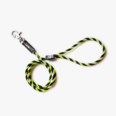 Black Yellow Leash