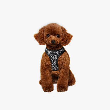 Bennys Jacquard Harness (Black)