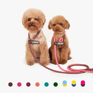 Smartleash Hard Type (9 color)
