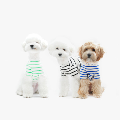 Casual Stripe T-shirt (7color)
