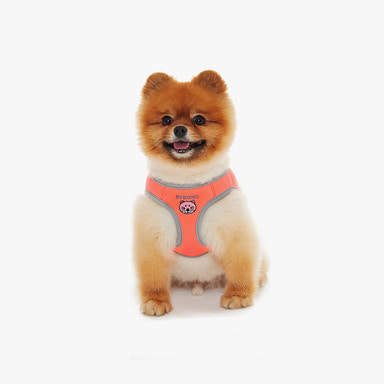 바이봉 Candy Harness (Neon Orange)